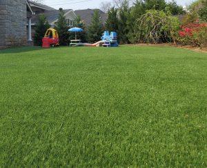 Residential Artificial Grass in Tulsa Yard
