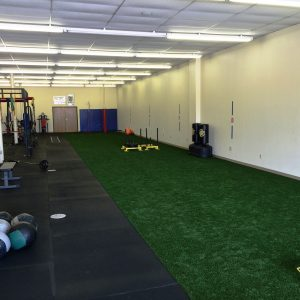 Artificial grass and artificial turf products from nexgen indoor sports turf solutioingenieria Choice Image