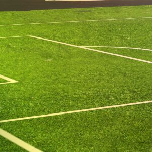 Outdoor Sports Turf
