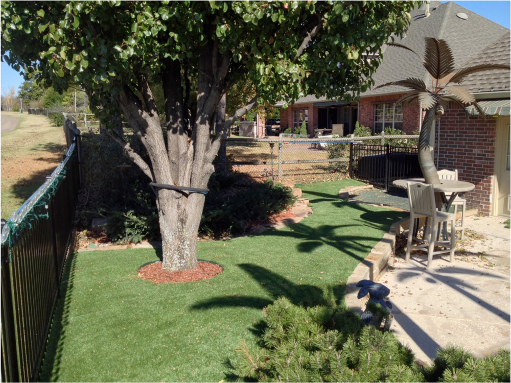 experience a carefree fall with fake grass lawns