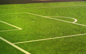 Synthetic Grass Ogden